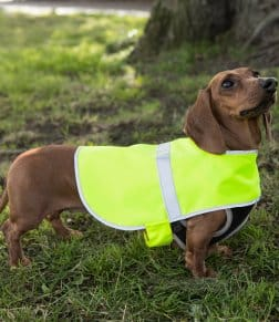 RTY Enhanced Visibility Reflective Dog Vest